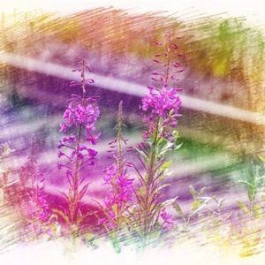 人生如茶,静心以对;时光如水,沉淀方澈