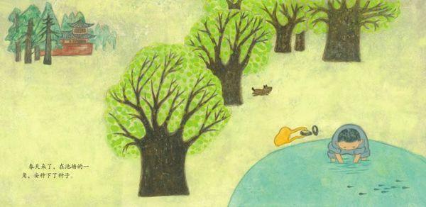 绘本《安的种子》